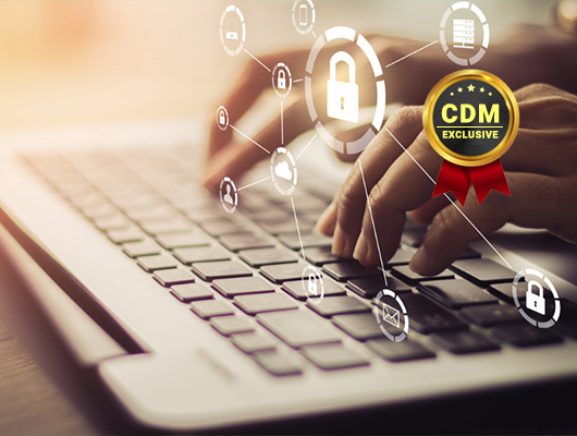 Ensuring Cybersecurity in A Remote Workplace
